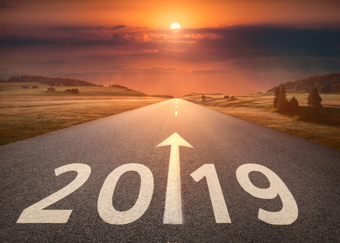 2019 The year ahead